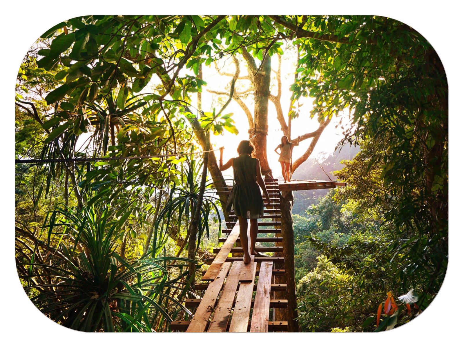 Les astuces et gestes du quotidien pour se reconnecter avec la nature